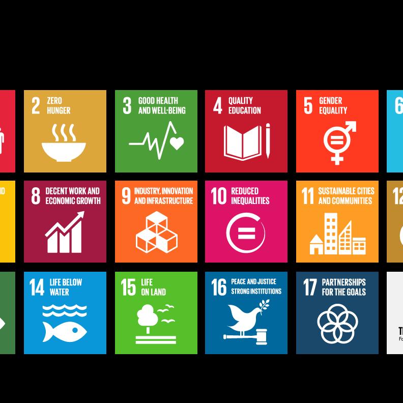 Global Goals 17 squares