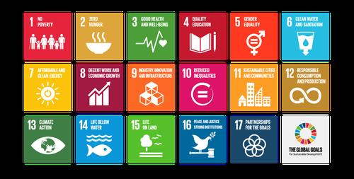 SDG squares