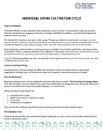 2. Individual fundraising COVID-19 Framework ENG.PNG