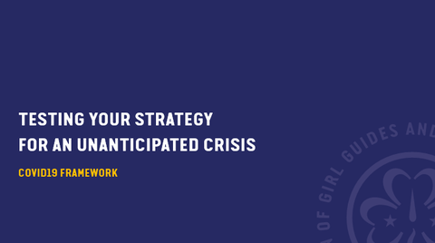 Testing your Strategy in times of Crisis COVID-19 Framework.PNG