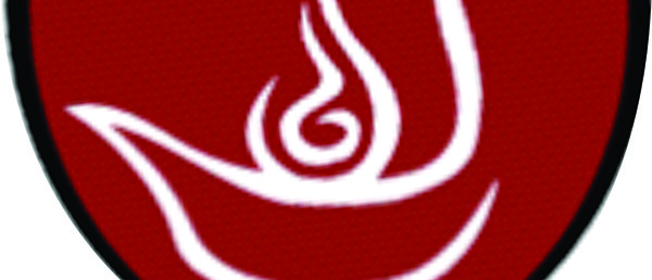 Logo Guias Mayores