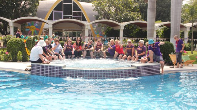 Sangam Pool 2018