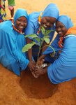 Niger 2017 - World Thinking Day planting