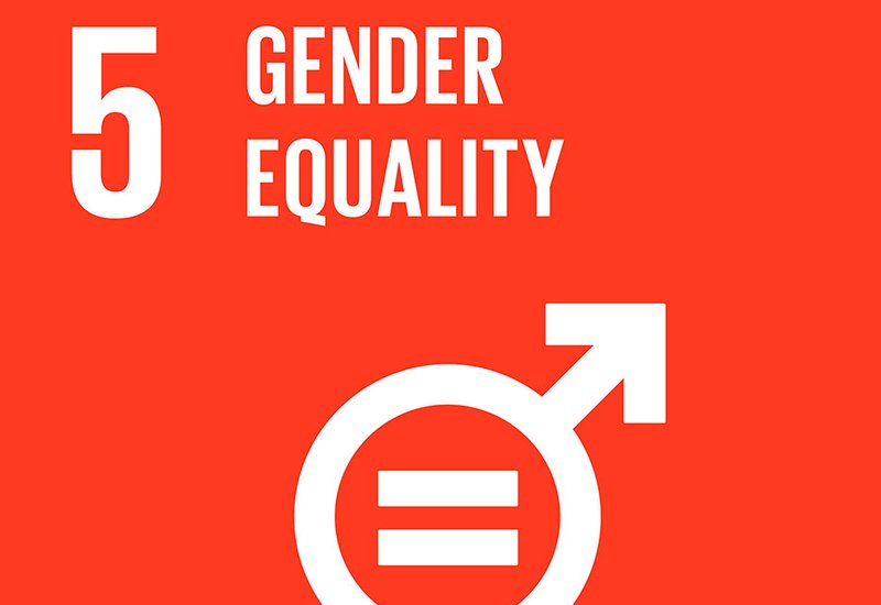 SDG Global Goal icon 5