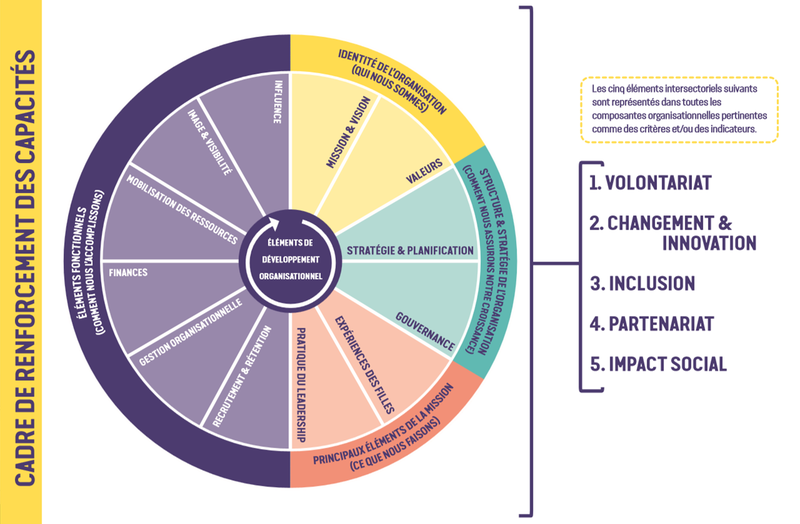 Capacity Assessment Tool - French