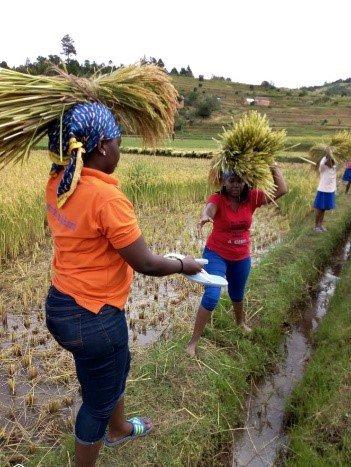 yess girls movement photo 4.jpg